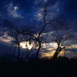 Oko cyklonu w Kimberley, styczeń - Australia Zachodnia