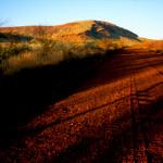 Outback w okolicach Parku Narodowego Karijini - Australia Zachodnia