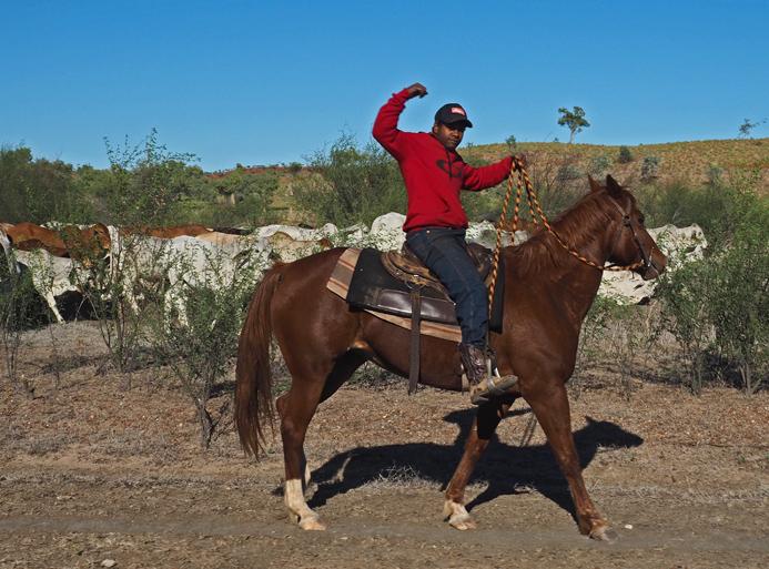 Stockman - aborygeński odpowiednik kowboja